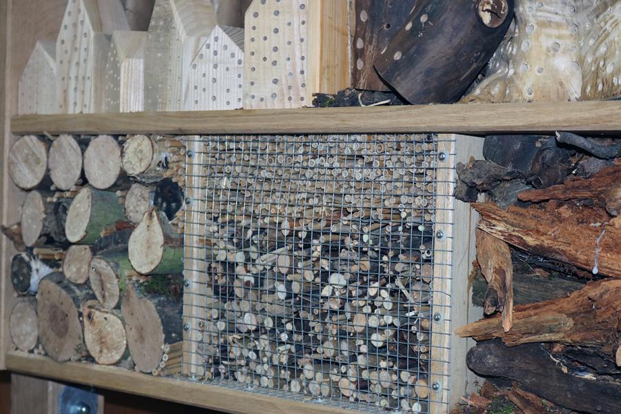Neues vom XXL–Insektenhaus